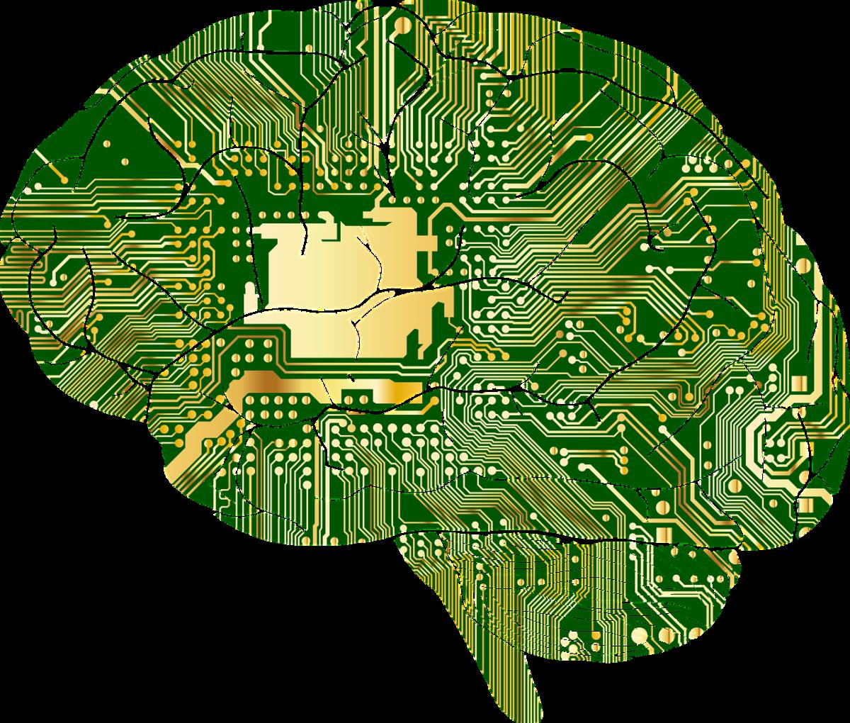 obrazek mózg