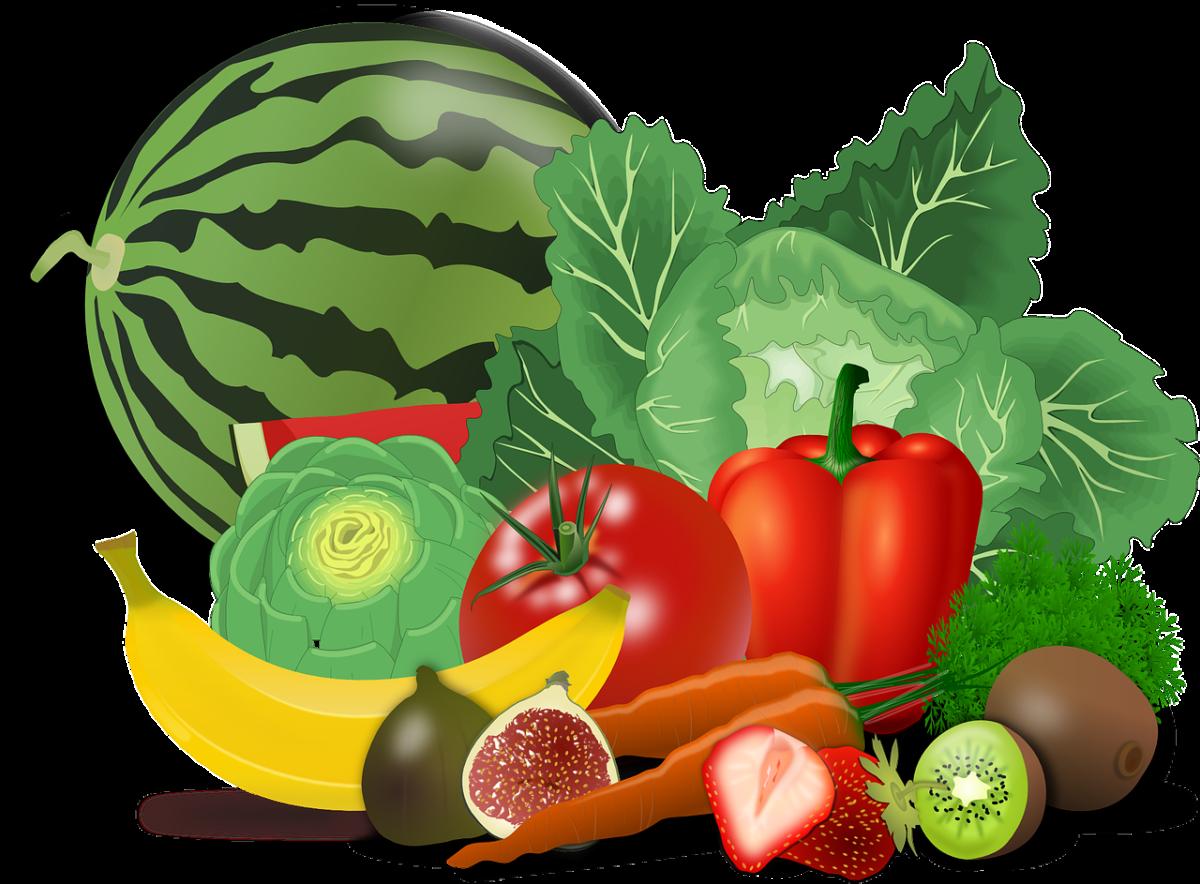 rysunek z warzywami
